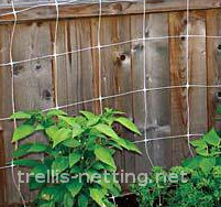 trellis net system installed on garden